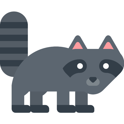 Racoon Vector Svg Icon 12 Png Repo Free Png Icons
